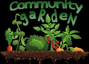 community-garden-clipart-17